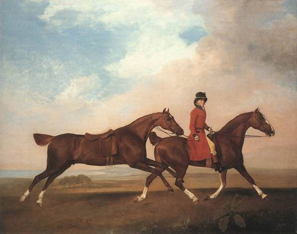William Anderson With Two Saddle horses